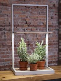 Coltura LED grow lights from Gardeners.com